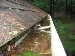 clogged gutter maintenance