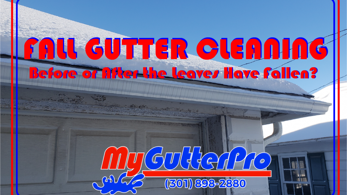 fall gutter cleaning